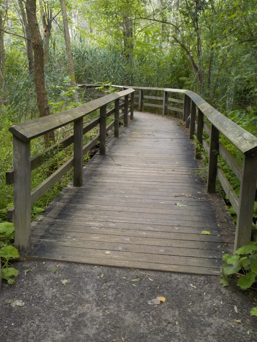 Boardwalk bridge entrance