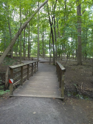 Fairy Trail Bridge 2