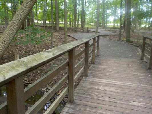 Fairy Trail bridge