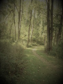 OT - Burlesque view of trail